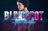 Blindspot, Staffel 3